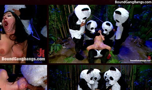 Beautiful brunette dreams about Panda Groupsex